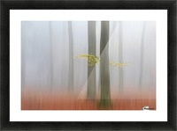 Autumnmorning Picture Frame print