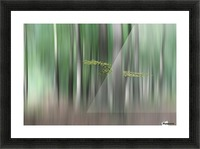 Summermorning Picture Frame print
