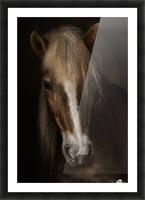 Sapience Picture Frame print