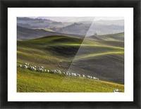 pastoral Picture Frame print