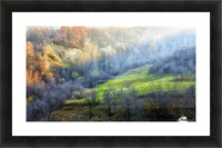 November colors Picture Frame print