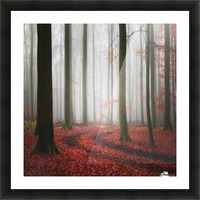 Autumnal Tracks Picture Frame print