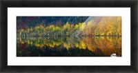 Autumnal silence Picture Frame print