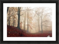 Waiting for the deer. Picture Frame print