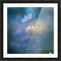 white shadow Picture Frame print