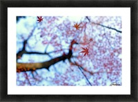 heirinji Picture Frame print