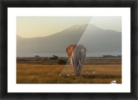 Under the roof of Africa Picture Frame print