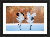 The dance of love Picture Frame print