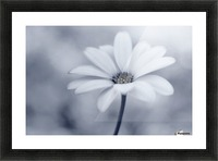 Blue tones Picture Frame print