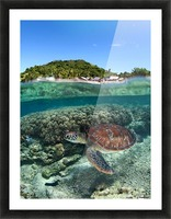 Along shore Picture Frame print