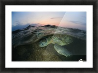 Under the wave Picture Frame print