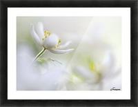 White Spring Picture Frame print