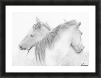 Horses Picture Frame print