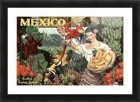 Mexico Land of Tropical Splendor Picture Frame print