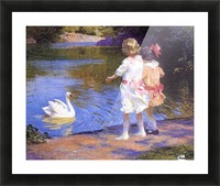 The Swan Picture Frame print