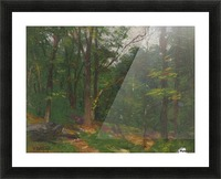 Forest in the spring Picture Frame print