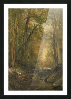 A Catskill Brook Picture Frame print