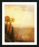A lake in the forest Picture Frame print