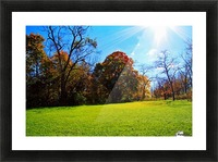 Sunny Fall Day Picture Frame print