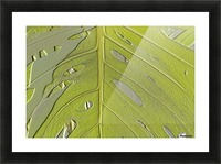 Leaf Texture Background Picture Frame print