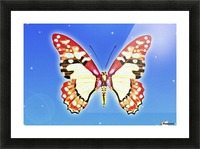 Butterfly Picture Frame print
