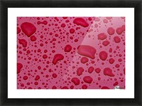 Water Drops On Pink Surface Picture Frame print