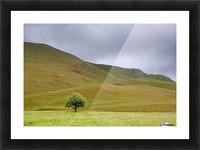 Dark Skies, England Picture Frame print
