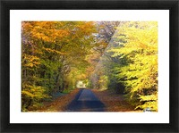 Rural Road, Argyll And Bute, Scotland Picture Frame print