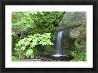 Waterfall In The Forest Picture Frame print