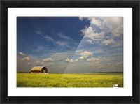 Alberta, Canada; An Old Barn In A Field Picture Frame print