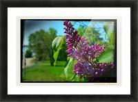 Purple Flowers Impression et Cadre photo
