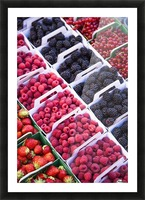 Berries in boxes at a food market;Sault vaucluse provence france Picture Frame print
