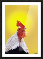 Crowing rooster;British columbia canada Picture Frame print