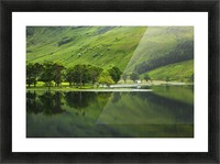 Green Peace, Buttermere, UK Picture Frame print