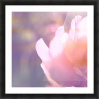 Rödklöver Picture Frame print