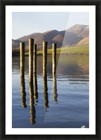 Wooden posts reflected in tranquil after with mountains the the background; Keswick, Cumbria, England Picture Frame print