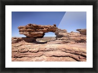 Natures Window Picture Frame print