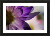 FPS-0002 Picture Frame print