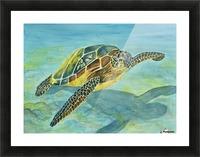 Sea Turtle Picture Frame print