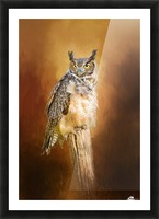 Great Horned Owl In Autumn Picture Frame print