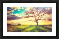 nature 05 Picture Frame print