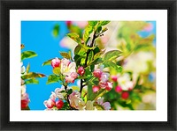Colors of Spring Picture Frame print