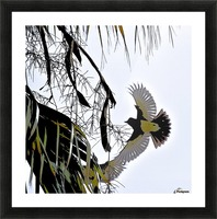 Orioles Abstract 1  Picture Frame print