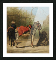 Donkeys in Cairo Picture Frame print