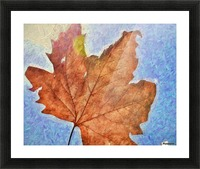 Autumn Leaves Macro 3 Abstract 3 Picture Frame print