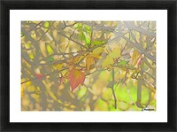 Leaves Macro 5 Abstract 2 Picture Frame print