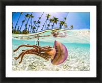 Stow Away Picture Frame print