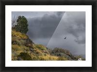 Desert Flyer Picture Frame print
