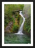 Full view of Sullivan Falls in the Opal Creek Wilderness, Oregon Picture Frame print