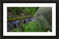 Rock wall trail, Sheppard's Dell, Columbia River Gorge, Oregon Picture Frame print